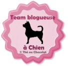 Team bloggeuse à chien